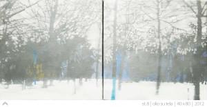 st.---40-x-80---2012-(8)